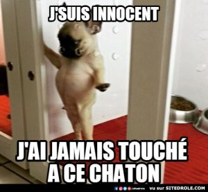 Je suis Innocent…