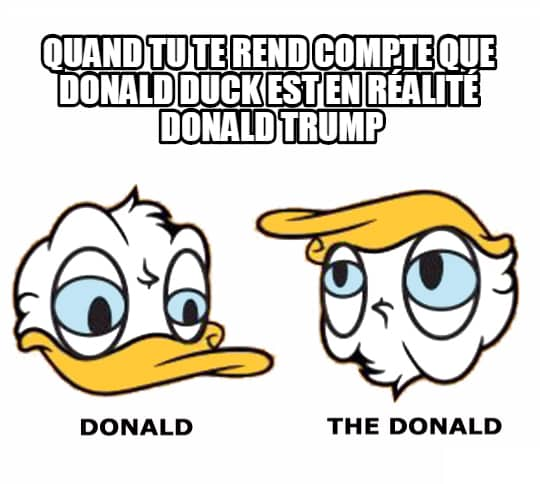 the-donald-duck-image-drole