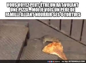 Le rat voleur de pizza…