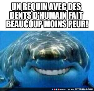 requin-humain-image-drole