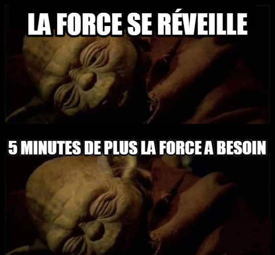 force-image-drole