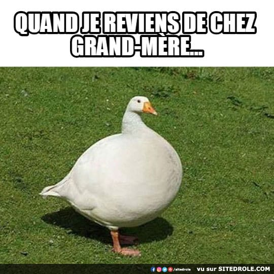 grand-mere-image-drole