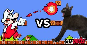 Mario Bros Vs Chat !
