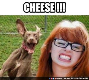 image-drole-cheese