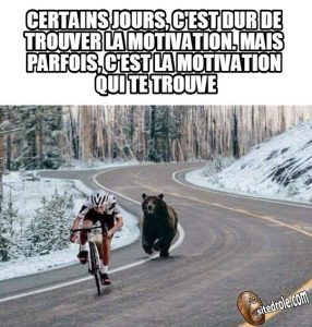 image-drole-motivation