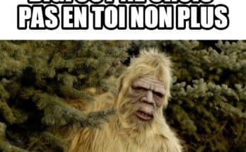 image-drole-bigfoot-crois-p