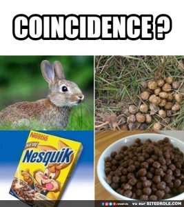 coincidence-image-drole