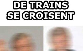 image-drole-trains